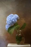 Blue Hydrangea In A Vase Fine-Art Print