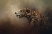 Morning Grizzly Fine-Art Print