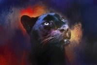 Colorful Expressions Black Leopard Fine-Art Print