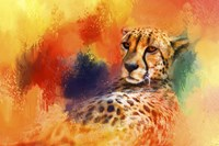 Colorful Expressions Cheetah Fine-Art Print