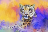 Colorful Expressions Snow Leopard Fine-Art Print