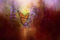 Autumn Monarch Fine-Art Print