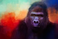 Colorful Expressions Gorilla Fine-Art Print