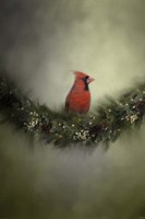 Waiting On Christmas Fine-Art Print