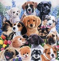 Puppy Collage Fine-Art Print