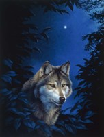 Blue Forest Fine-Art Print