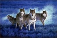 Blue Legend Fine-Art Print