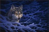 Deep Blue Fine-Art Print