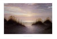 Twilight Dunes Fine-Art Print