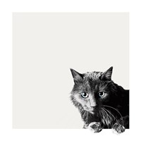 Inquisitive Fine-Art Print