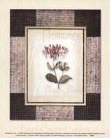 Woven Garden I Fine-Art Print