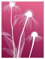 Floral 5 Fine-Art Print