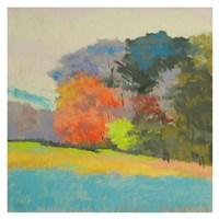 Fox Farm Woods Fine-Art Print