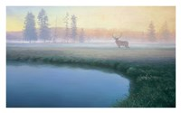 Yellowstone Mist Fine-Art Print
