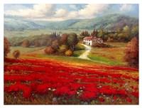 Poppy Fields Afar Fine-Art Print