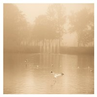 Golden Lake in Fog Fine-Art Print