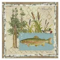Trout Postcard Fine-Art Print
