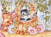 Daisie Kitten Fine-Art Print