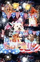 4th of July Fine-Art Print