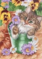 Pansy Pots Fine-Art Print