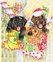 Christmas Stocking Fillers Fine-Art Print