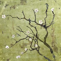 Cherry Tree I Fine-Art Print