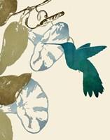 Hummingbird and Morning Glories Fine-Art Print