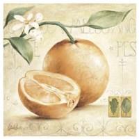 C. Ancilotti - Arancia Fine-Art Print