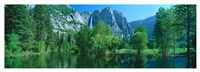 Yosemite Falls & Merced Fine-Art Print
