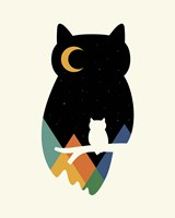 Eye On Owl Fine-Art Print