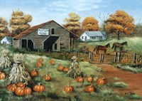 Cooksville Barn Fine-Art Print