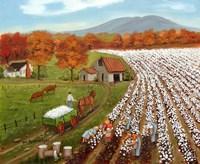 Cotton Field and Baker's Mtn Fine-Art Print