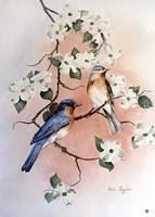 Bluebirds and Dogwood Fine-Art Print