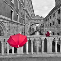 Red Umbrella 1 Fine-Art Print
