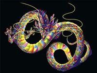 Chinese Dragon Fine-Art Print