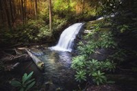 Morning Glow At The Waterfall Fine-Art Print