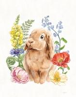 Sunny Bunny I FB Fine-Art Print