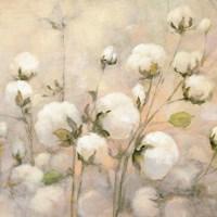 Cotton Field Crop Fine-Art Print