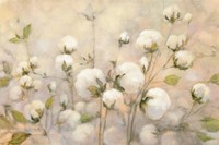 Cotton Field Fine-Art Print