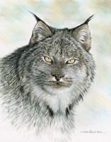 The Wild Side Fine-Art Print