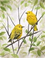 Springtime Warblers Fine-Art Print