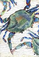 Beautiful Blue Swimmer Fine-Art Print