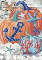 Coastal Pumpkins Fine-Art Print