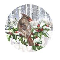 Winter Wonder Female Cardinal Fine-Art Print