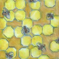 Honeycomb Fine-Art Print