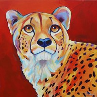 Cheetah Fine-Art Print