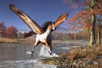 Autumn Pegasus Fine-Art Print