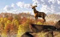 Buck Over Autumn Valley Fine-Art Print
