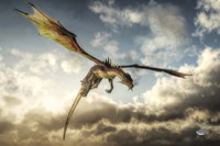 Flying Dragon Death From Above Fine-Art Print