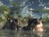 Hippos Coming To Get You Fine-Art Print